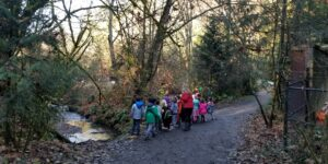 Students looking into a stream